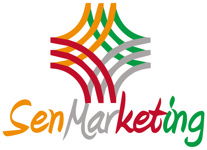 SenMarketing Digital | Agence Web Grenoble et Dakar